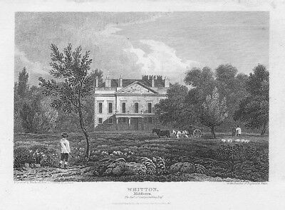 LONDON View at Whitton, Middlesex - Antique Print 1815