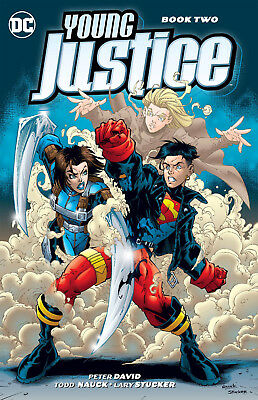 Young Justice Volume 2 Softcover Graphic Novel