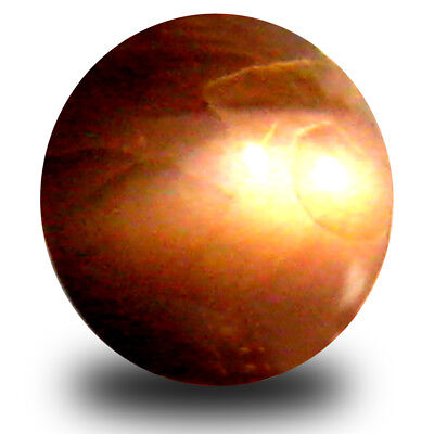 0.60 ct Oval (5x5mm) Un-Heated Color Change Alexandrite Cat's Eye Loose Gemstone