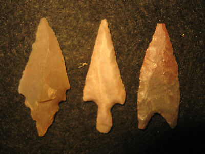 3 Authentic North African Neolithic Arrowheads 3000-7000 Years Old Artifacts #C9