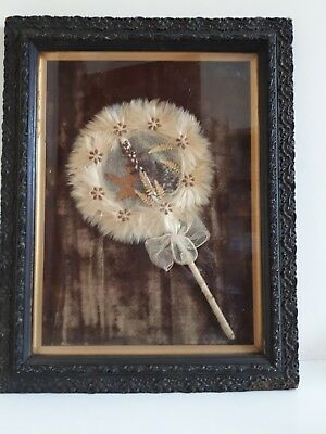 Rare Jamaica Indonesia Lace Bark Spatha Palm Fern Seed Hand Fan Victorian Frame