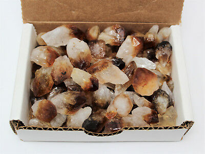 1/2 lb (8 oz) Bulk Citrine Points Crystal Collection Natural Specimens in Box