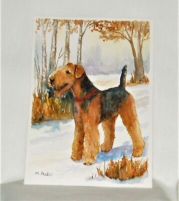 Airedale Terrier  Orginal Watercolor by Margaret Prince