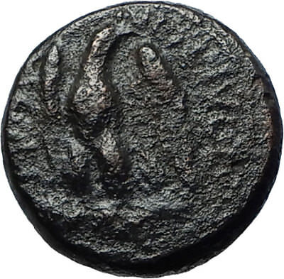 AMPHIPOLIS in MACEDONIA 148BC Authentic Ancient Greek Coin ZEUS & EAGLE i68370