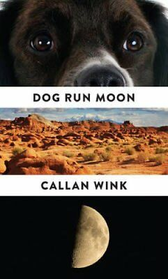 Dog Run Moon Stories by Callan Wink 9781847088147 (Paperback, 2016)