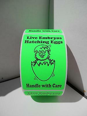 50 cut/folded LIVE EMBRYOS HATCHING EGGS HANDLE WITH CARE fluor green Labels