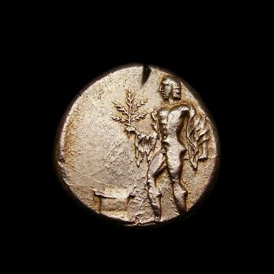 Apollo laurel branch with Highlights gold iridescent tone.Rare Stater Greek Coin