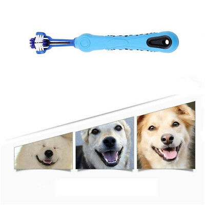 Three Sided Pet Dog Cat Cleaning Brush Dog ToothBrush Teeth Care Cleaning TR