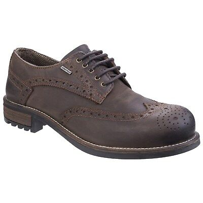Cotswold Oxford Mens Lace Waterproof Brogue Wing Tip Memory Foam Footbed Shoes
