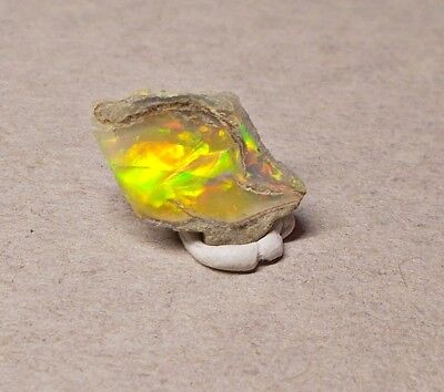 Opal - TOP Flash - roh - rough - Welo - gedost - 2,90 ct - 15x9x4