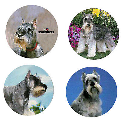Schnauzer Magnets :4 Cool Schnauzers for your Fridge or Collection-A Great Gift