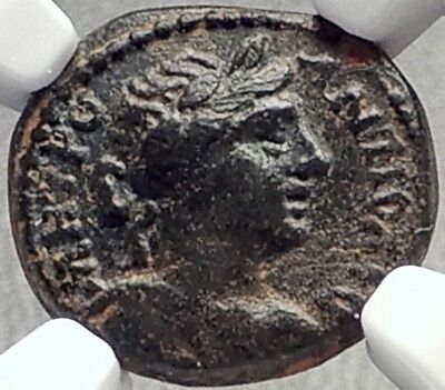 ANTIOCH 128AD Hadrian Time Authentic Ancient Greek Coin APOLLO BRANCH NGC i68940