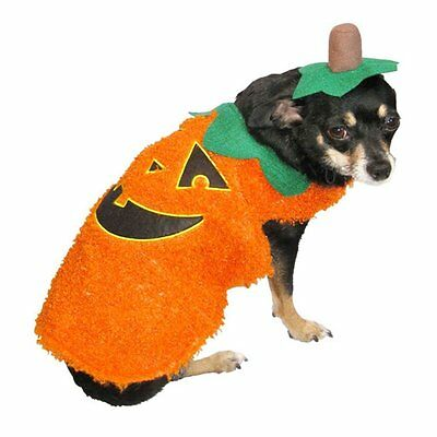 NEW SIZE SMALL 2-PIECE FUZZY PUMPKIN Dog Halloween Thanksgiving Costume 12'-13""