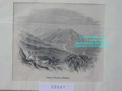 59841-Portugal-Portuguesa-Machico-Madeira-T Holzstich-Wood engraving-1885