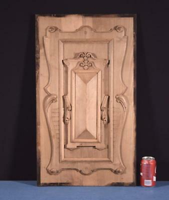 *Large French Antique Panel/Door in Solid Walnut Wood Salvage