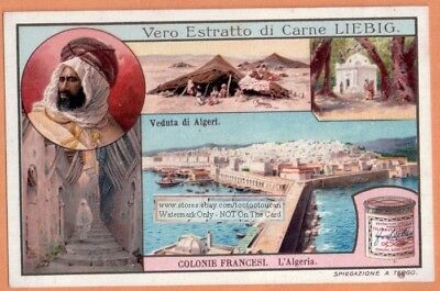 Algeria Algeri France French Colony Africa Native Bedouin Camp c1909 Trade Card
