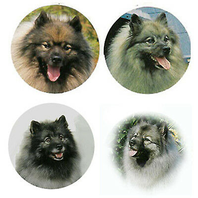 Keeshond Magnets:4 Way-Cool Keeshonden 4 your Fridge or Collection-A Great Gift