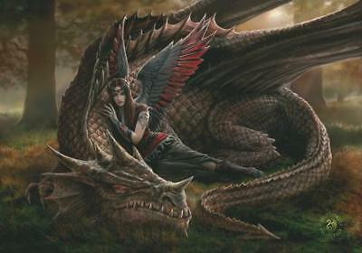 Anne Stokes Flagge Fahne Posterflagge Winged Companions
