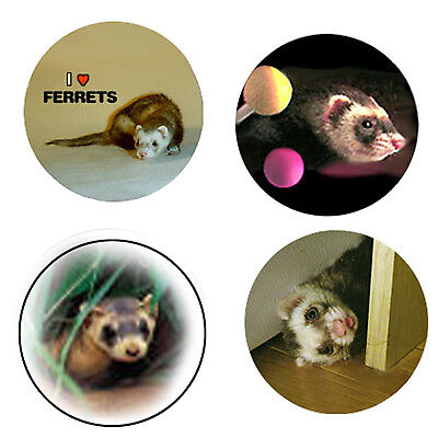 Ferret Magnets: 4 Way-Cool Ferrets for your Fridge or Collection-A Great Gift