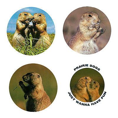 Prairie Dog Magnets: 4 Prairie Dogs 4 your Fridge or Collection-A Great Gift
