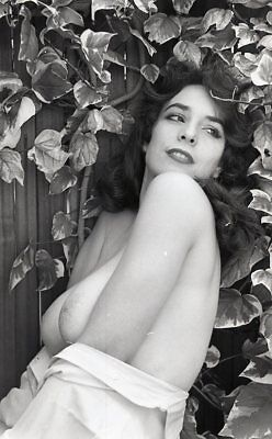 1960s Ron Vogel Negative, busty nude pin-up girl Marianne Arras, t996225