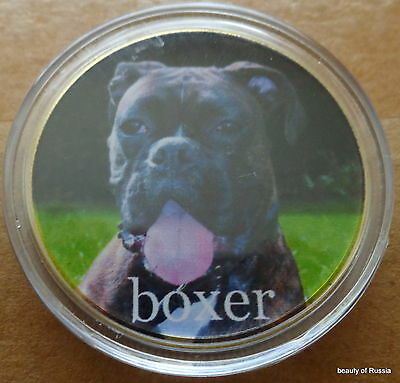 Hund Boxer 24K vergoldet 40 mm Münze