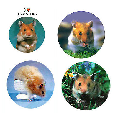 Hamster Magnets:4 Cool Hamsters for your Fridge or Collection-A Great Gift