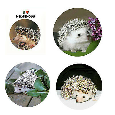 Hedgehog Magnets-A  4 Charming Hedgehogs for your home or collection-Great Gift