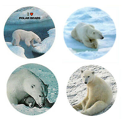 Polar Bear Magnets: 4 Cool Polar Bears 4 your Fridge or Collection-A Great Gift