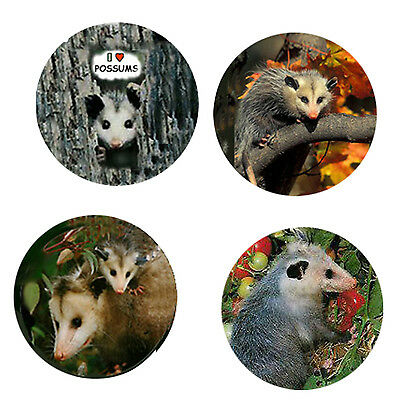 Possum Magnets-B:  4 Possum/Opossum Magnets 4 your home or collection-Great Gift