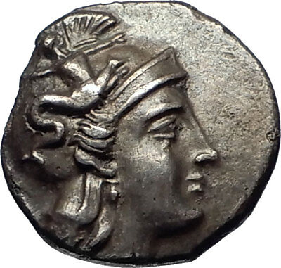 TARENTUM Taras CALABRIA 302BC Authentic Ancient Silver Greek Coin OWL NGC i69805