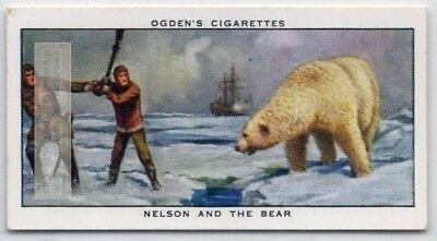 Horatio Nelson Battles a Polar Bear Royal Navy 75+ Y/O Trade Ad Card