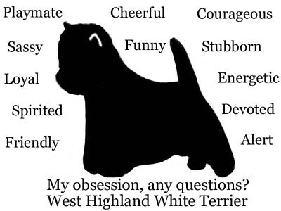 West Highland Terrier dog Obsession? Sweatshirt Size Large RED one only SALE