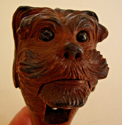 19th century Black Forset carved wood nutcracker in the form a dogs head