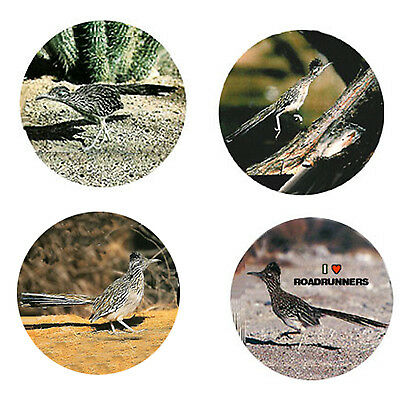 Roadrunner Magnets: 4 Rapid Roadrunners 4 your Fridge or Collection-A Great Gift