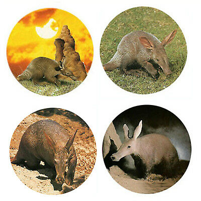 Aardvark Magnets: 4 Antsy Aardvarks for your Fridge or Collection-A Great Gift