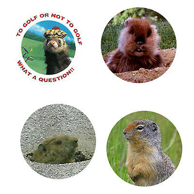Gopher Magnets: 4 Cool Gophers for your Fridge or Collection-A Great Gift