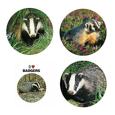 Badger Magnets:4 Cool Badgers for your Fridge or Collection-A Great Gift