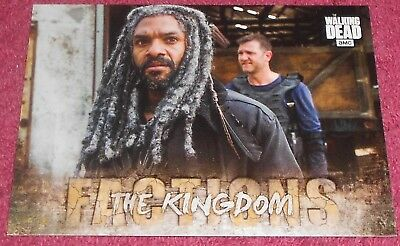 Walking Dead - Road To Alexandria - Factions  Insert Card #F9