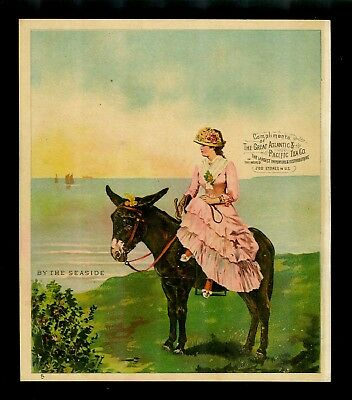 Pretty Lady in Pink Rides Sidesaddle On Donkey-1880s Victorian Trade Card