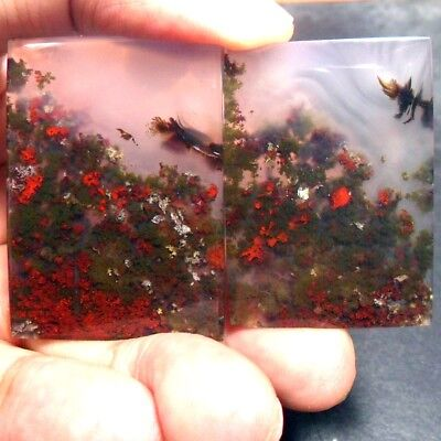 140ct AAA NATURAL Green Brown RED GARDEN MOSS AGATE Pair ~3D Landscape PICTURE~
