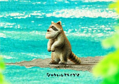 Takara Tomy Panda's ana Shakurel Planet Part4 Wild Animal Raccoon Figure