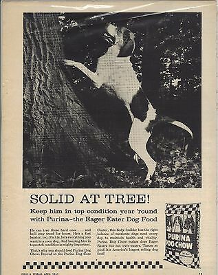Original 1961 Purina Dog Chow Magazine Ad - Solid at Tree