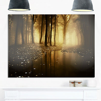 Lake in Forest with Fall Fog - Landscape Photo Glossy Metal Wall Art
