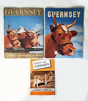 Vintage Set of 3 Guernsey Cow Magazines and Pamphlet - Circa 1956