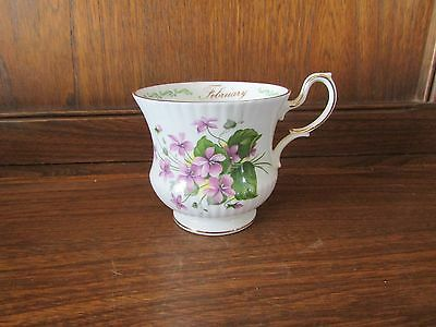 Queens Rosina China~Special Flowers~ February Violets Tea Cup