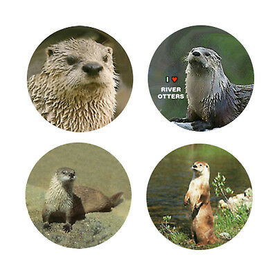 River Otter Magnets:  4 Charming River Otters 4 your home or collection