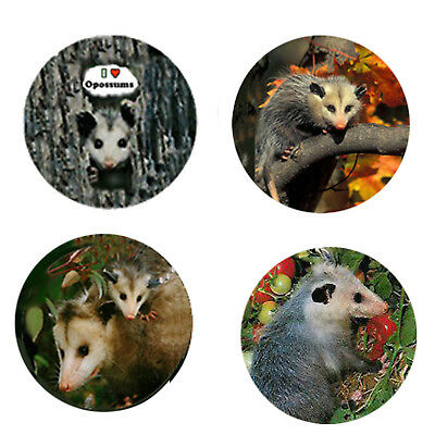 Possum Magnets:  4 Opossum Magnets 4 your home or collection-Great Gift