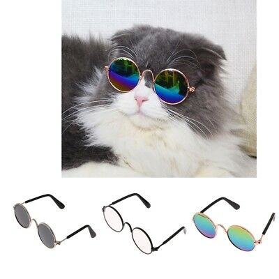 Small Pet Cat Dog Grooming Fashion Sunglasses Sun Glasses Eye Protection Wear