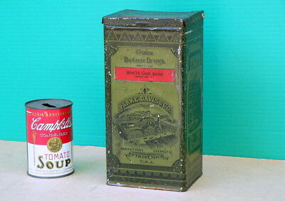 Antique c1884 Parke Davis Detroit MI Botanic Drugs Pressed Herbs Apothecary Tin